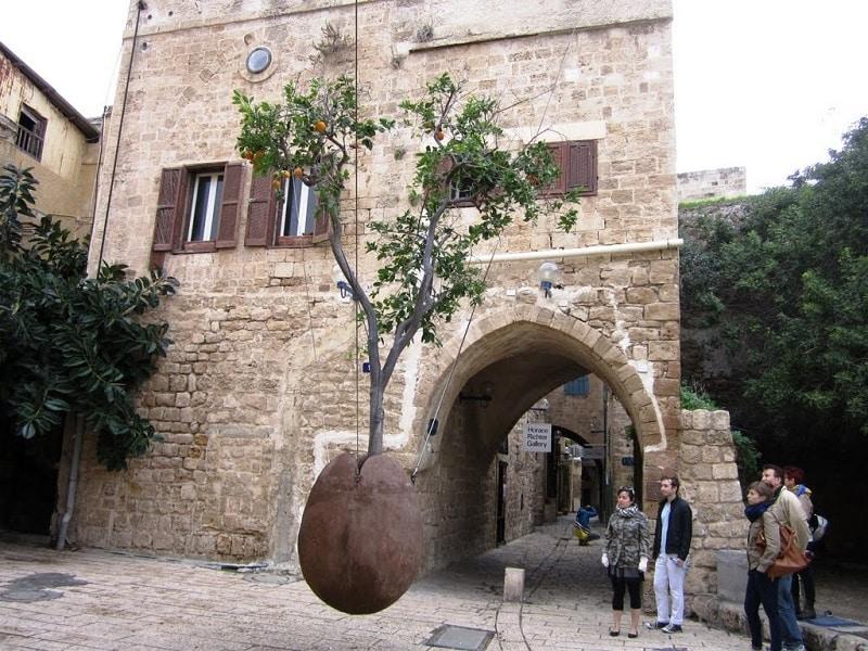 Дерево в каменном яйце